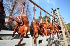 Rzędy leczący mięsny obwieszenie suszyć obraz stock