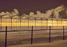 Rzędy szklarnie przy zimy nocą obraz royalty free