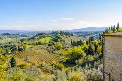 Rzędy winorośl w rdzy i czerwieni tworzą dywan nad tocznymi wzgórzami w Tuscany zdjęcia stock