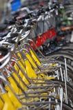 rząd roweru obrazy royalty free