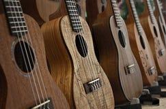 Rząd ukulele Fotografia Stock