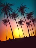 Rząd zwrotników drzewka palmowe przeciw zmierzchu niebu Sylwetka wysocy drzewka palmowe Zwrotnika wieczór krajobraz Gradientowy k ilustracja wektor