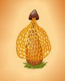 Rzadka kolor żółty pieczarki ilustracja Kreskówka wektoru grzyb Dictyop ilustracji
