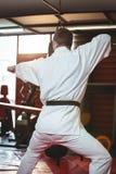 Rzadki widok karate gracza spełniania karate postawa obrazy royalty free