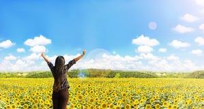 Rzadki widok kobiety podwyżki ręk uścisku słoneczników pole z natu Fotografia Royalty Free