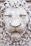 Rze?ba ?redniowieczna lew g?owa kamienny W?ochy - czo?owy widok zdjęcie royalty free