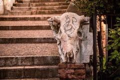 Rzeźba krowy czaszka zdjęcia royalty free