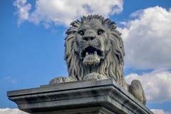 Rzeźba lew blisko parlamentu budynku w Budapest obrazy stock