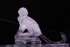 Rzeźba lodowa małpa zdjęcie stock