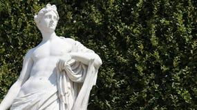 Rzeźba młody człowiek Z Zielonym Leves zdjęcie royalty free