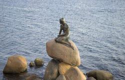 Rzeźba mała syrenka, jesień wieczór copenhagen Denmark Obraz Stock