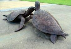 Rzeźba przedstawia żółwie na początku kotelni wzdłuż rzecznego spaceru Aborigin Zdjęcia Royalty Free