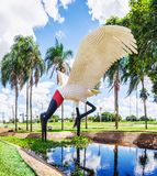Rzeźba Tuiuiu ptak przed Campo ` s Grande lotniskiem fotografia stock