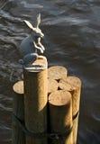 Rzeźba zajęczy blisko Zajęczą wyspą w Petersburg Zdjęcia Royalty Free