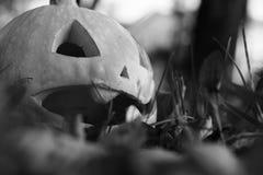Rzeźbiąca Halloweenowa bania na gazonie obraz royalty free