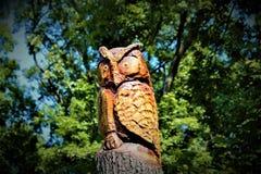 Rzeźbiąca sowa fotografia royalty free