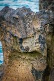Rzeźbiąca twarzy postać na skale przy plażą w Bellycastle zdjęcie royalty free
