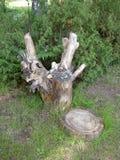 Rzeźbić drewniane postacie Zdjęcie Stock