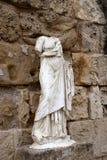 Rzeźba w salami Zdjęcie Stock