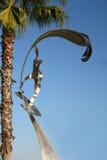 rzeźbiarz plażowa cesarska kipiel Obraz Stock