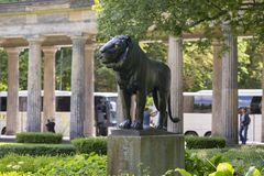 Rzeźba lew przed Kolumnadowym podwórzem na Muzealnej wyspie Obrazy Royalty Free