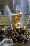 Rzeźba Samson w strumieniach fontanna w Peterhof Fotografia Stock