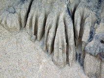 Rzeźba w Piaskowatej zatoczce Obrazy Stock