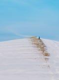 Rzeźba w Sapporo parku w zimie, góra Moere Zdjęcia Stock