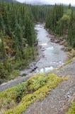 rzeczna dolina Obraz Royalty Free