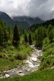 Rzeczna dolina Otaczająca drzewami zdjęcie royalty free