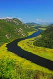 Rzeczna krzywa przy Jeziornym Skadar Rijeka CrnojeviÄ niedalekim ‡ a zdjęcia stock