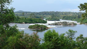 Rzeczna Nil sceneria blisko Jinja w Uganda Fotografia Stock