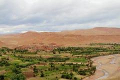Rzeczna oaza w pustyni Obrazy Stock