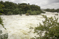 Rzeczna powódź Obraz Royalty Free