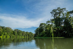 Rzeczna wycieczka w dżungli zdjęcie stock