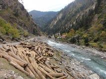 Rzeczne góry i drzewni drewna Zdjęcia Stock
