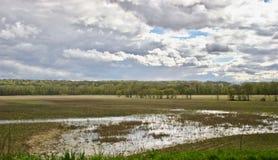 Rzeczne niziny Po deszczu Obraz Stock