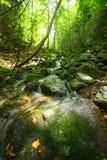 rzeczni chikumagawa headwaters Zdjęcia Stock