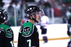 rzeczni hokejowi miasto jaguary Zdjęcia Royalty Free