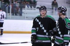 rzeczni hokejowi miasto jaguary Fotografia Stock