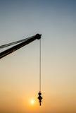 Rzeczny Ładowniczy żuraw Zdjęcie Royalty Free