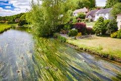 Rzeczny Avon blisko Salisbury Południowy Anglia UK obraz royalty free