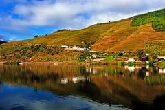 Rzeczny Douro fotografia royalty free