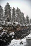 Rzeczny jar i skały w zimie Zdjęcie Stock