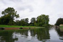 Rzeczny krzywka Anglia Fotografia Royalty Free