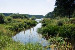 Rzeczny Nerskaya płynie w jezioro Zdjęcia Royalty Free