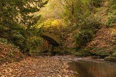Rzeczny Ouseburn pod kamienia mostem obrazy royalty free