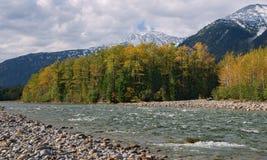 Rzeczny Snegnaya Śnieżny w jesieni Zdjęcie Royalty Free