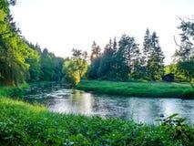 Rzeczny spływanie między lasami obraz stock