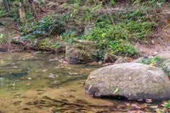 Rzeczny spływanie przez skał i ampuła kamienia Zdjęcia Stock